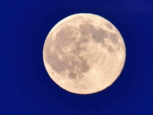 Wahrheit oder Mythos: Wie sinnvoll ist das Gärtnern nach Mondphasen?