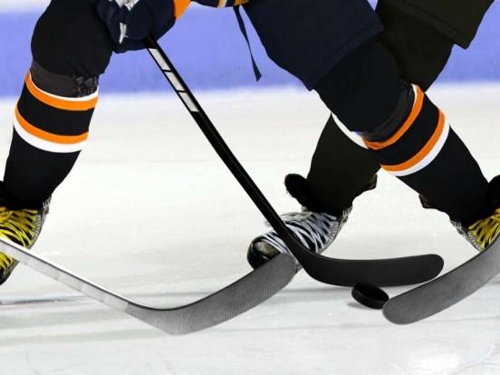 """""""Eishockey Live - DEL"""": Wiederholung der Sendung im TV und online"""
