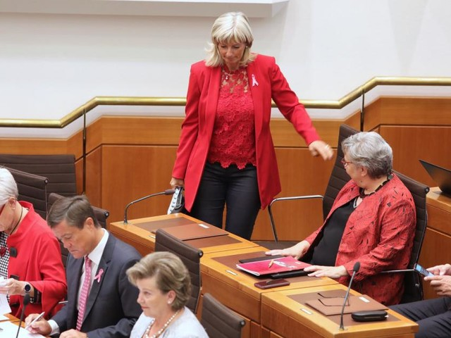 Landtag löst sich auf und hängt weitere Sitzungen an