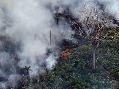 Bolsonaro schickt Armee zur Bekämpfung von Waldbränden in Amazonasgebiet