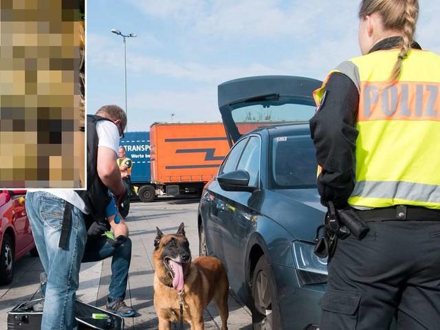 Zoll blickt in Kofferraum von Auto - was Beamte dann sehen, verschlägt ihnen die Sprache