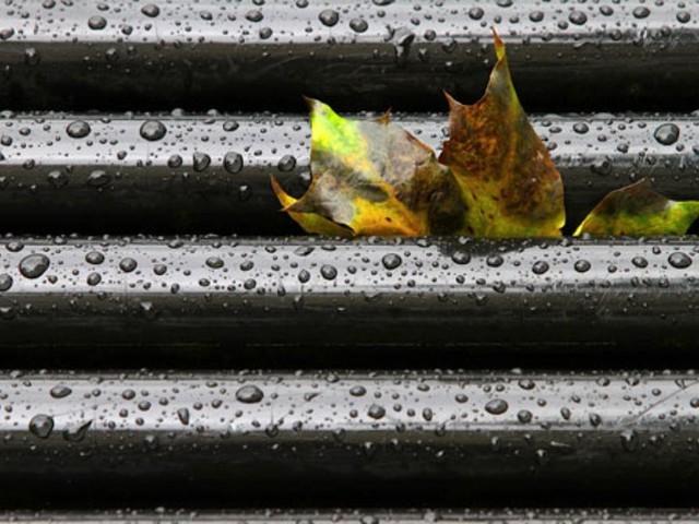 Wetter in Stuttgart und der Region: Verregneter Start ins Wochenende