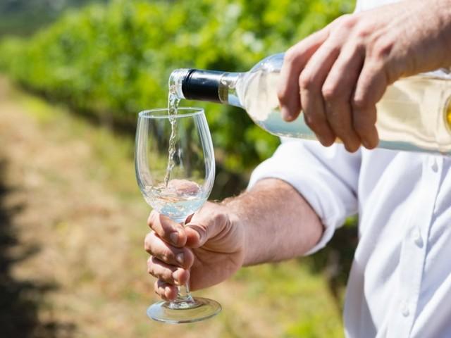Weinbau: Der liebste Sommerwein der Deutschen