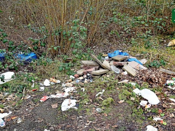 Sicherheit: Heiligensee hat ein Problem mit illegalem Müll