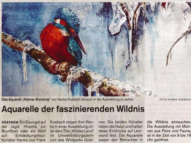 Aquarelle der faszinierenden Wildnis – Presseberichte über unsere Ausstellung im Wildpark MV