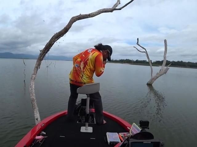Angler trifft auf Hornissennest - und sieht nur einen Ausweg