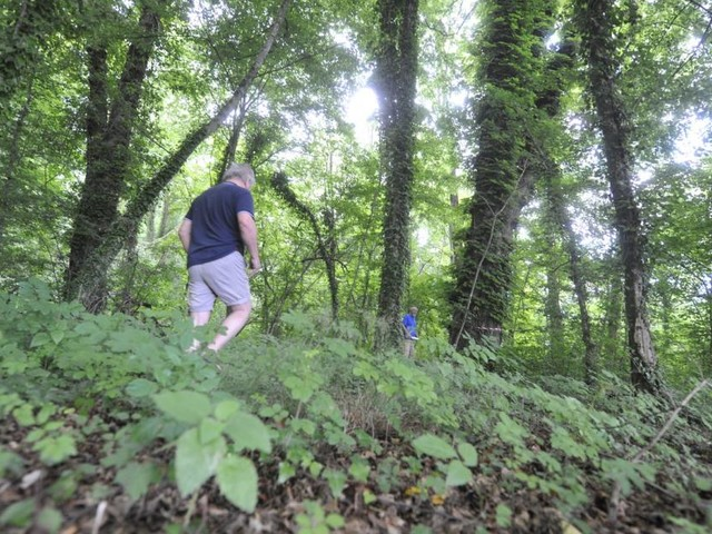 Der Schlosspark im Kurort bleibt im Dornröschenschlaf – noch