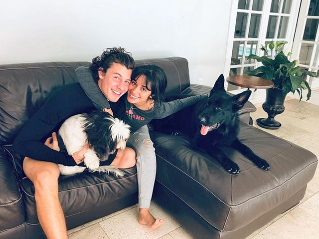 Shawn Mendes: Krasser Streit mit Camila Cabello!
