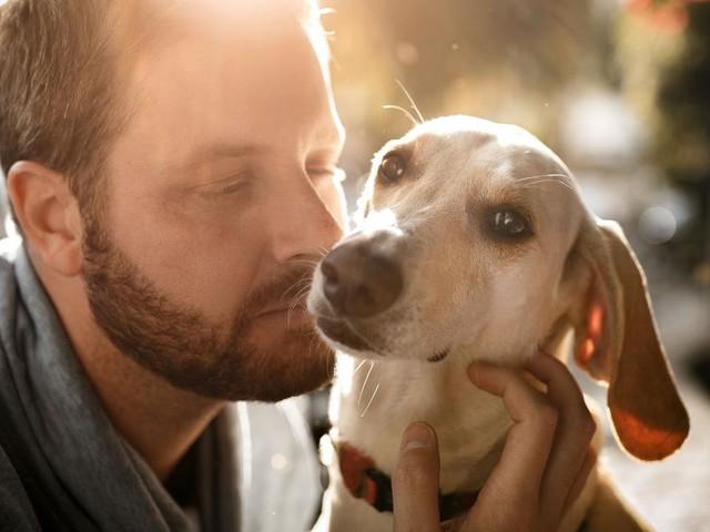 Dating-Apps: Hundeliebhaber suchen eher nach Verbindlichem