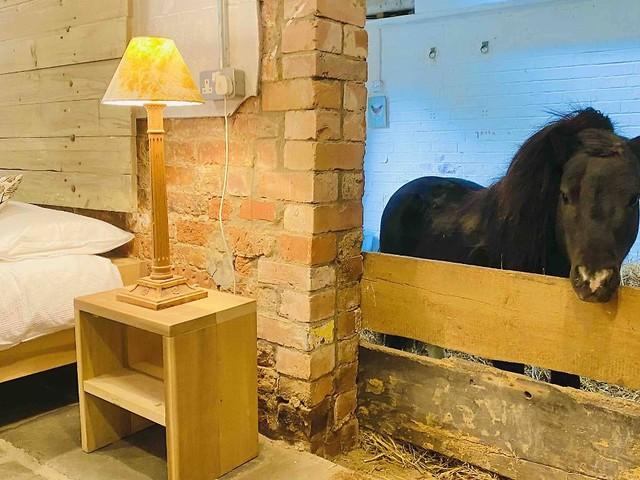 """""""Black Box"""" wacht über Image: Airbnb-Team poliert schmutzige Vorfälle auf"""