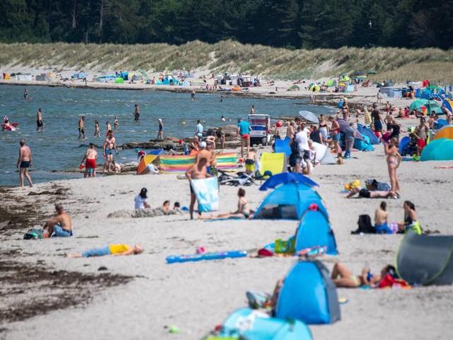 Erste Infektion: Warnung vor Vibrionen in der Ostsee