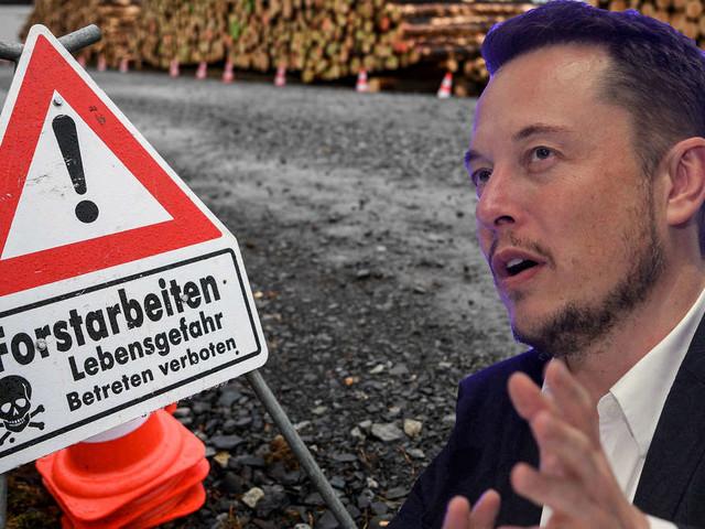 """Baustopp für Tesla-Fabrik: Springt Elon Musk jetzt ab? Regierung reagiert """"nervös"""""""