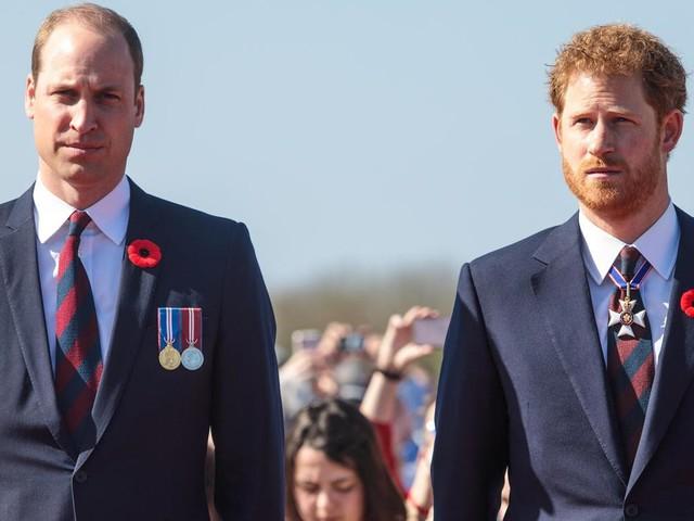 Prinz Philip: So sollen Harry und William bei der Beisetzung kooperieren