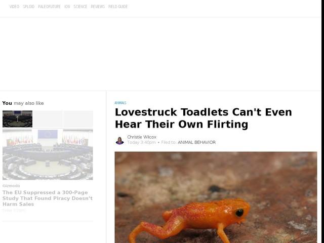 Lovestruck Toadlets Can't Even Hear Their Own Flirting