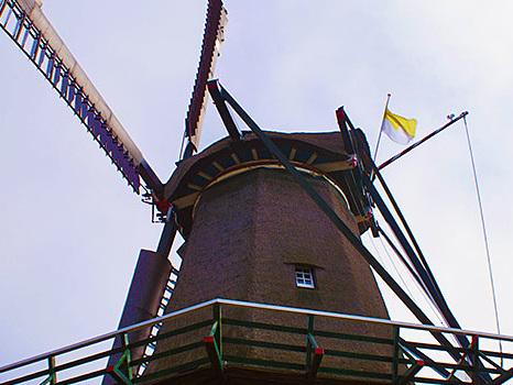 Ein neues Dach für die Mühle von Texel