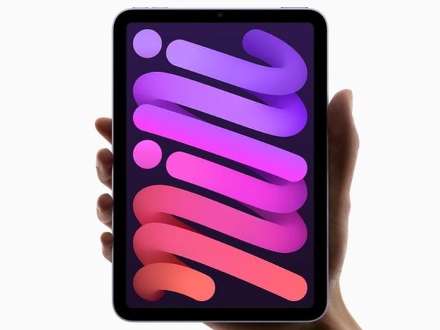 iPad mini: Dank Frischzellenkurz zum Must-have?