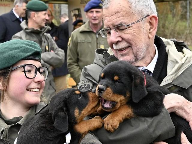 Welpentaufe: Acht neue Hunde-Soldaten für das Bundesheer