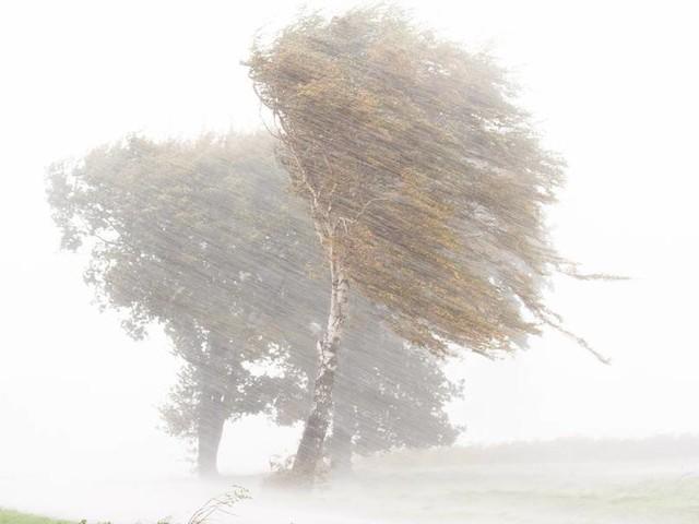 "Sturm ""Ignatz"" oder Sturm ""Hendrik""? Wie erhalten Tiefdruckgebiete ihre Namen?"