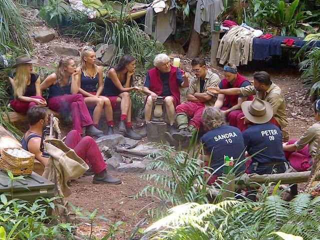 Dschungelcamp 2019: Tag 8 - Die Reihen lichten sich: Gleich wird der erste Camper aus dem Busch gewählt