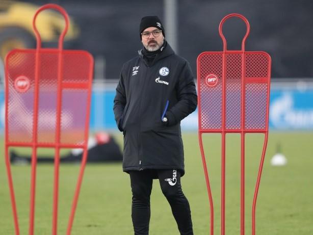 Schalke: Darum trainiert Schalke unter Wagner so oft am Abend