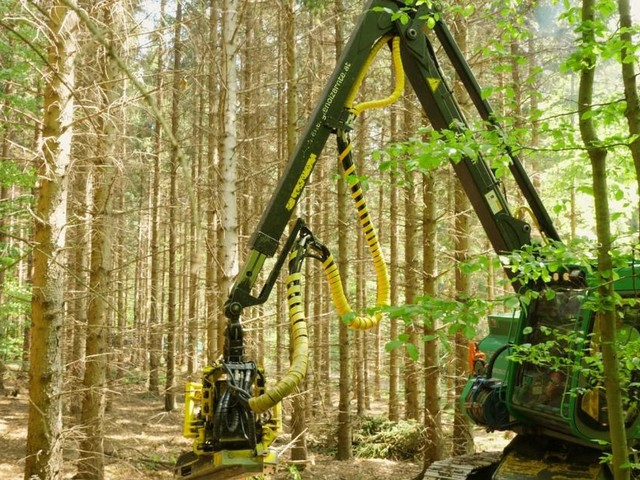 App, Drohne, Roboter: Neue Helfer im Wald