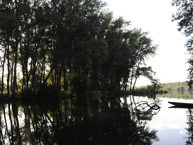 Rheininsel Korsika: Campingbus rutscht in Kanal – eine Tote