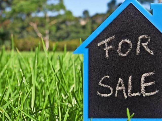 Mann ersteigert Villa in Florida – und bekommt ein Stück Rasen