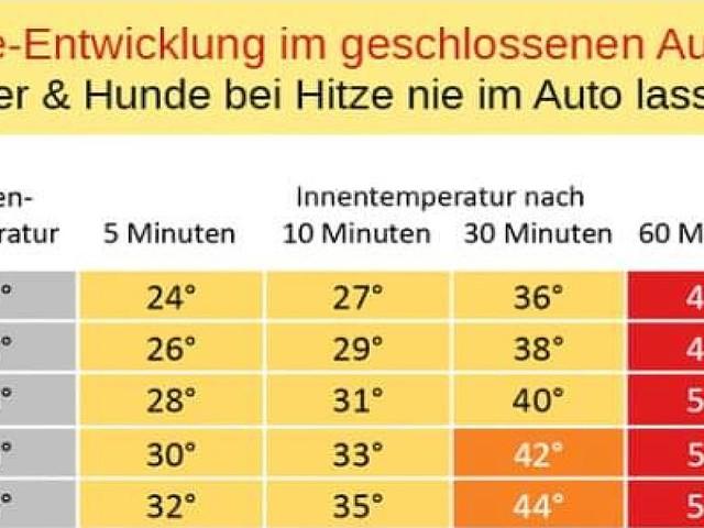 Sommer mit 40 Grad - 70 Grad im Cockpit! Autofahrer-Checkliste für die Super-Hitze