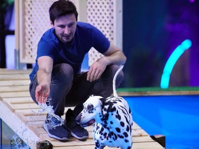 """""""Ganz großes Kino!"""" - Bei neuer RTL-Show """"Top Dog Germany"""" macht eine gehörlose Hündin alle sprachlos"""