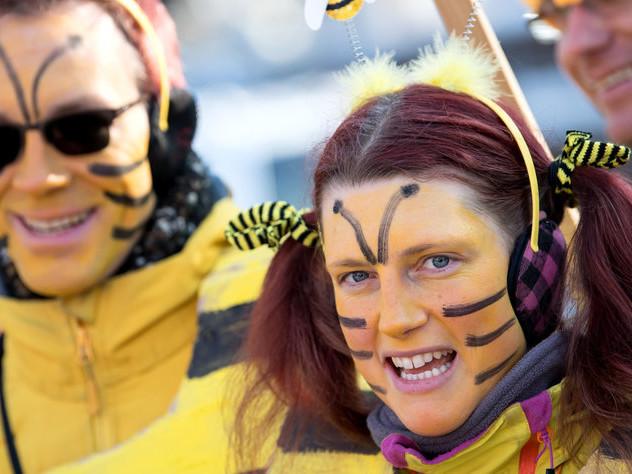 Kommentar Volksbegehren in Bayern: Für die Bienen, gegen die Bauern
