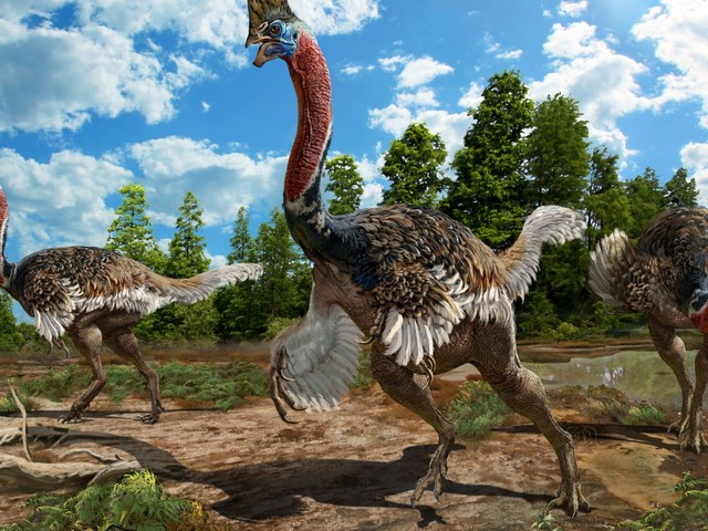 This Newly-Discovered Dinosaur Looks Just Like a Modern Day Cassowary