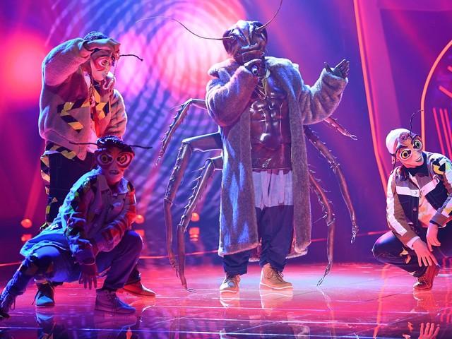 """""""The Masked Singer""""-Kakerlaken-Aus: War es Angelo Kelly?"""