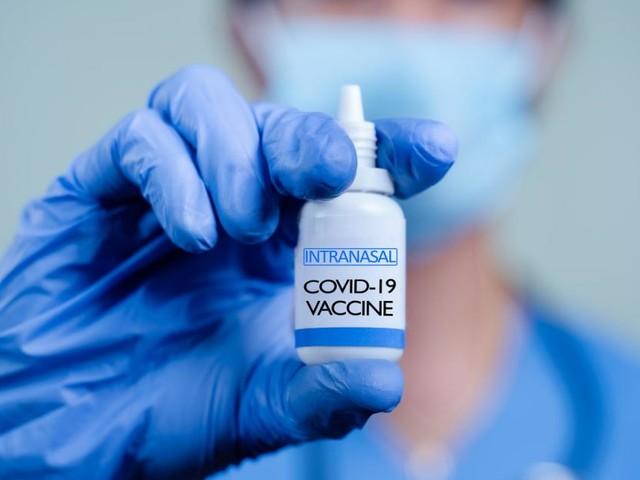 Reduzierte Viruslast: Corona-Impfung in die Nase spritzen?
