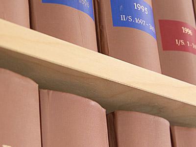 Rechtsanwälte Darmstadt, Juristischer Rat