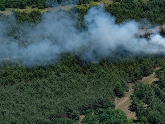 Wetter in Deutschland - Waldbrand nordöstlich von Berlin ausgebrochen - Unwetterwarnungen in NRW aufgehoben