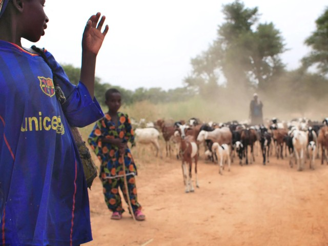 Bewaffneter Überfall: 24 Tote bei Angriff in Burkina Faso