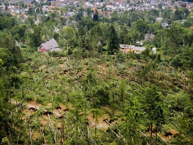 Sturm in Niederlanden: Häuser beschädigt, Bäume umgeknickt