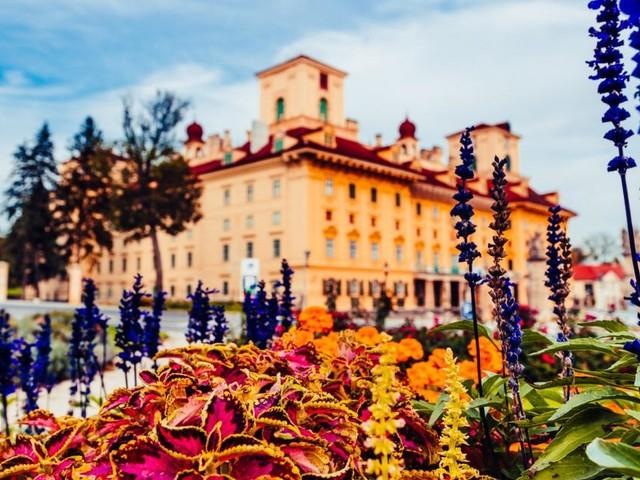 Herbstgold: Festival in Eisenstadt überwindet Grenzen