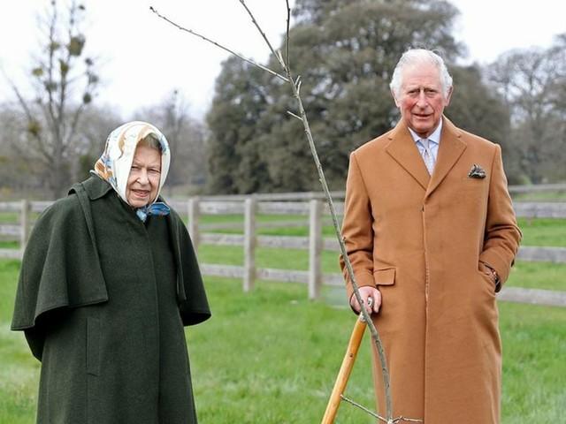 Queen Elizabeth II. und Prinz Charles: Sie pflanzen zum Thronjubiläum einen Baum
