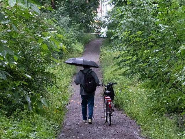Wetter in Baden-Württemberg: Der August startet nass
