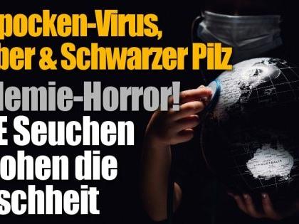 Q-Fieber, Affenpocken-Virus, Schwarzer Pilz: Pandemie-Horror! DIESE Seuchen bedrohen die Menschheit
