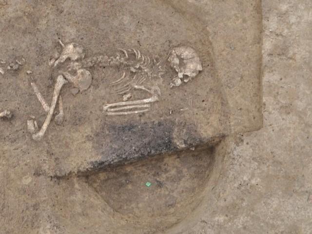 Archäologischer Fund in Württemberg: Die Perlen-Frau von Ammerbuch