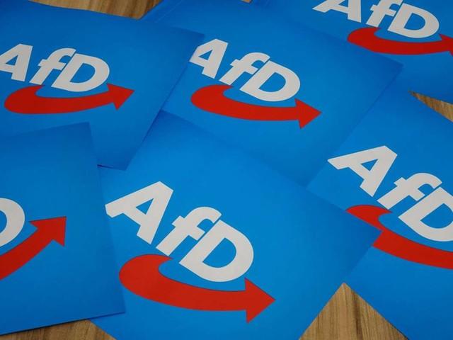 """Aktion des """"Zentrums für politische Schönheit"""": AfD um fünf Millionen Flyer betrogen"""