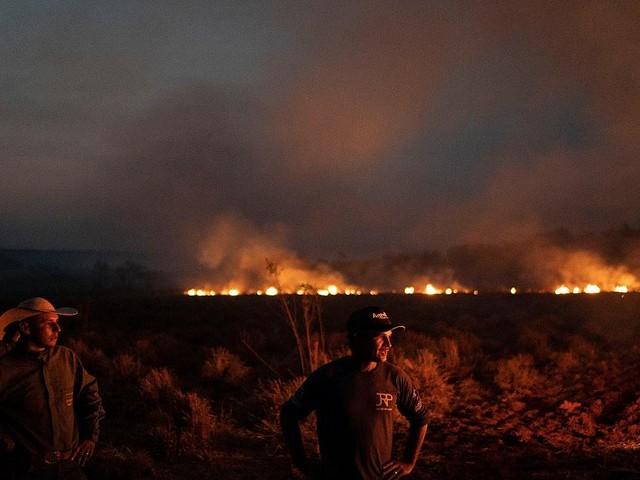 Waldbrände im News-Ticker - Bolsonaro schickt Armee zur Bekämpfung von Waldbränden in Amazonasgebiet