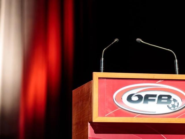 Zweikampf um den ÖFB-Chefsessel: Wie die Politik mitmischt