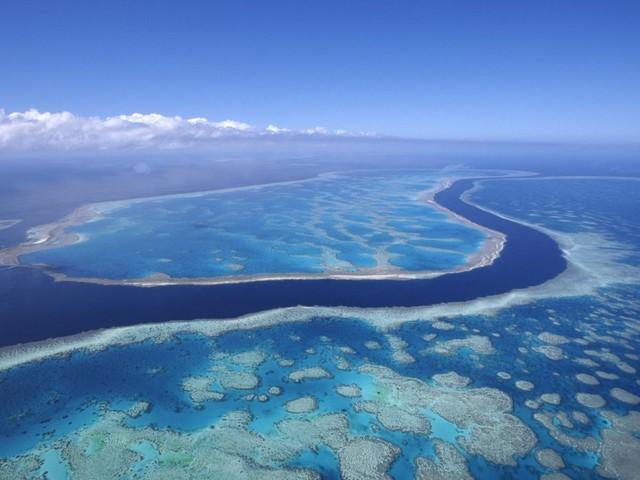 Unesco-Entwurf beschreibt schlimmen Zustand: Great Barrier Reef droht Verlust des Welterbe-Status