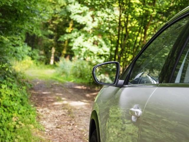 Bundesrepublik Autoland: Naturfreunde auf Parkplatzsuche