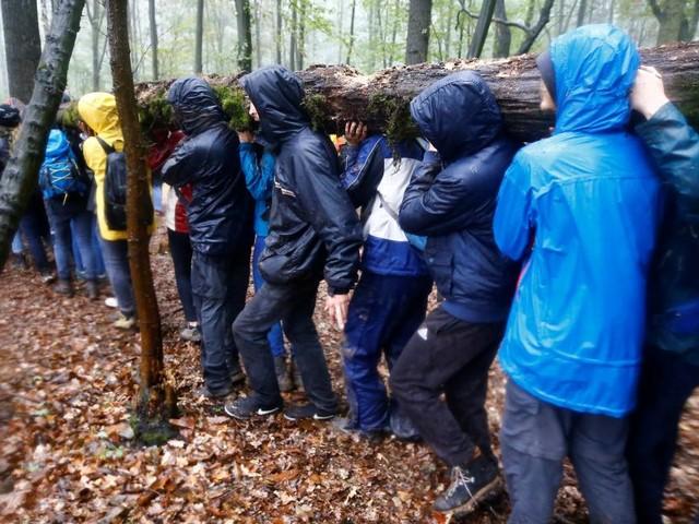 Hambacher Forst: Neue Großdemonstration gegen Braunkohle-Abbau