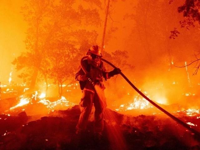 """Kalifornien: """"Gender Reveal Party"""" löst Waldbrand aus – Ehepaar wegen fahrlässiger Tötung angeklagt"""