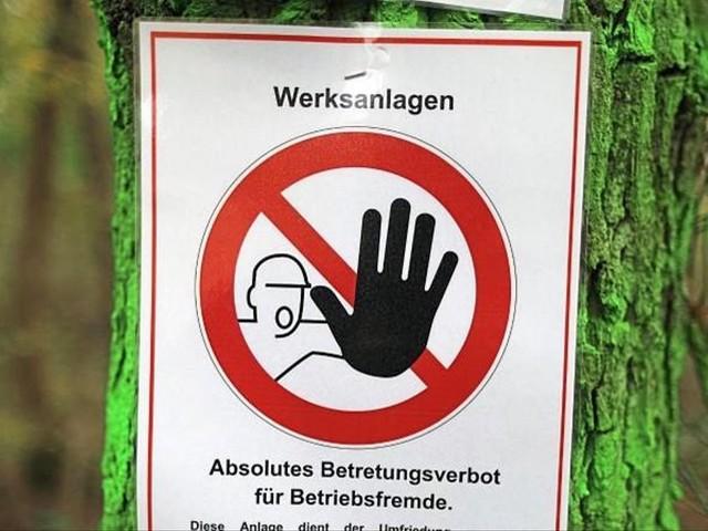 Gericht stoppt Rodungen am Hambacher Forst